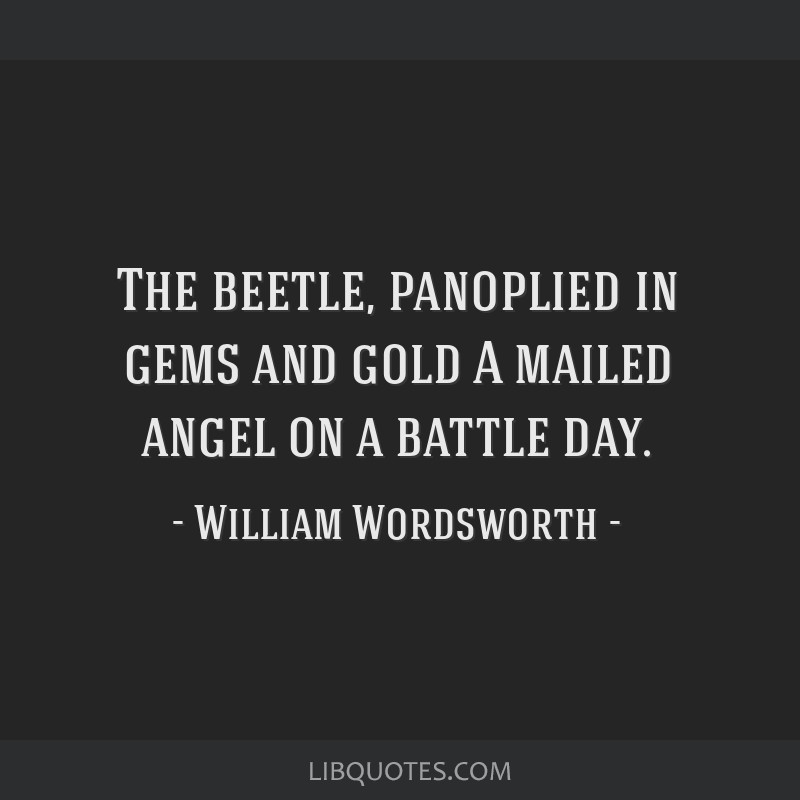 The beetle, panoplied in gems and gold A mailed angel on a battle day.